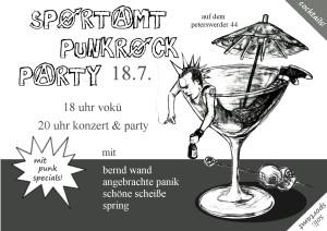 punkflyer